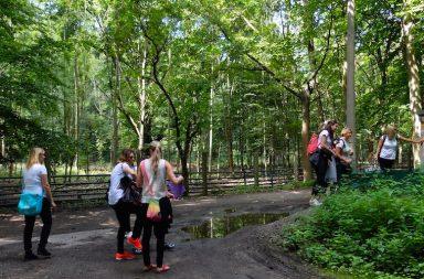 JGA im Wald