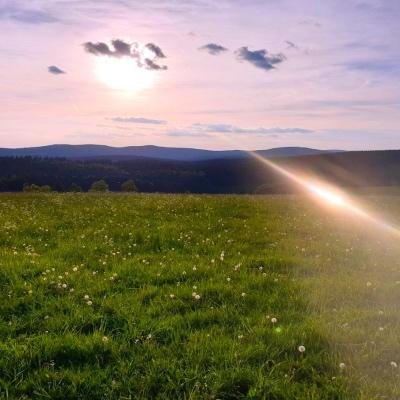 Sonnenschein in Thüringen