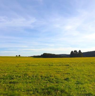 Aussichten in Thüringen